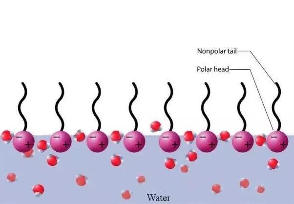 表面活性剂在日常生活中的应用有哪些