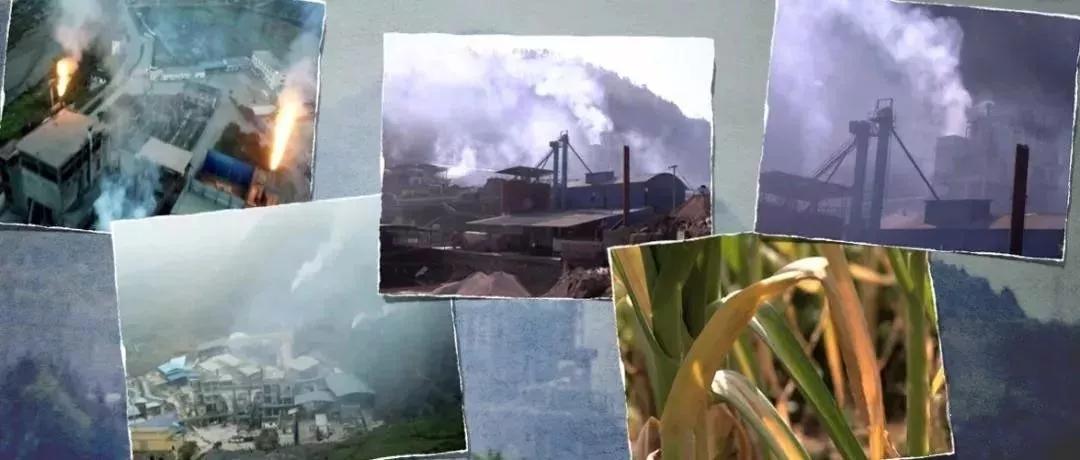 【央视曝光】黄磷行业污染,是谁在背后纵容?